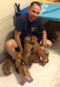 philip puppies